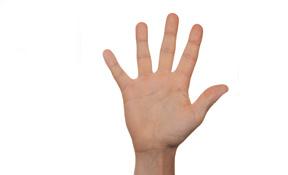Die 5 Phasen der 21 Tage Stoffwechselkur - Hand 5 Finger